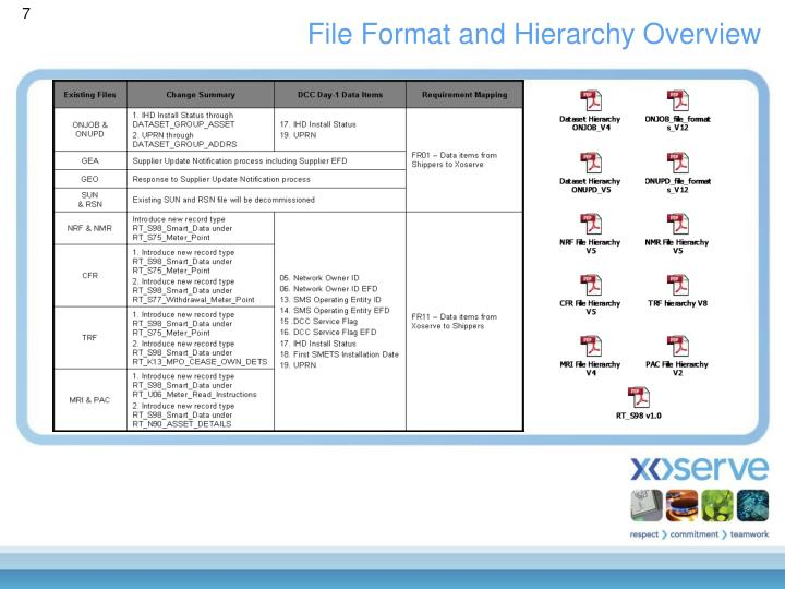 File Format and Hierarchy Overview