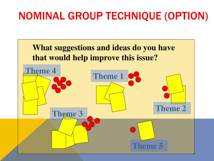 Nominal Group Technique (option)