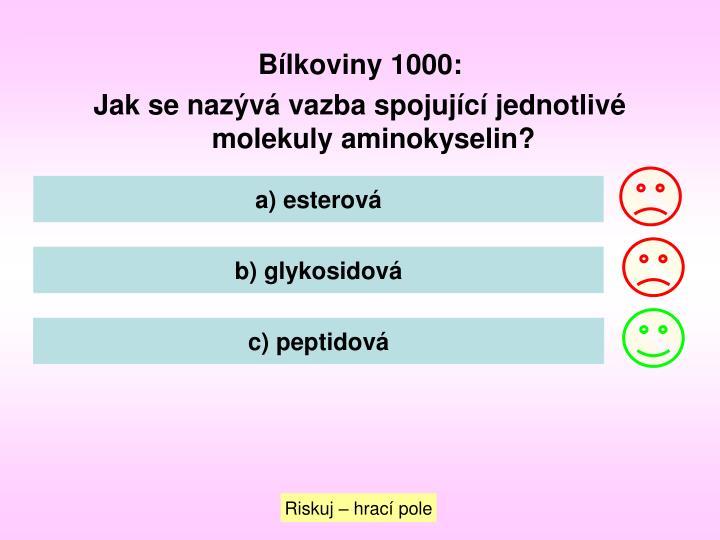 Bílkoviny 1000: