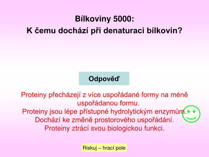 Bílkoviny 5000: