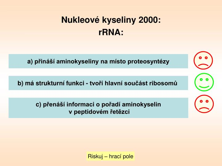 Nukleové kyseliny 2000: