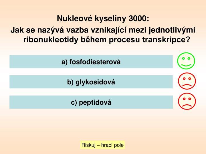 Nukleové kyseliny 3000: