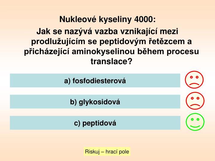 Nukleové kyseliny 4000: