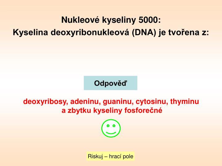 Nukleové kyseliny 5000: