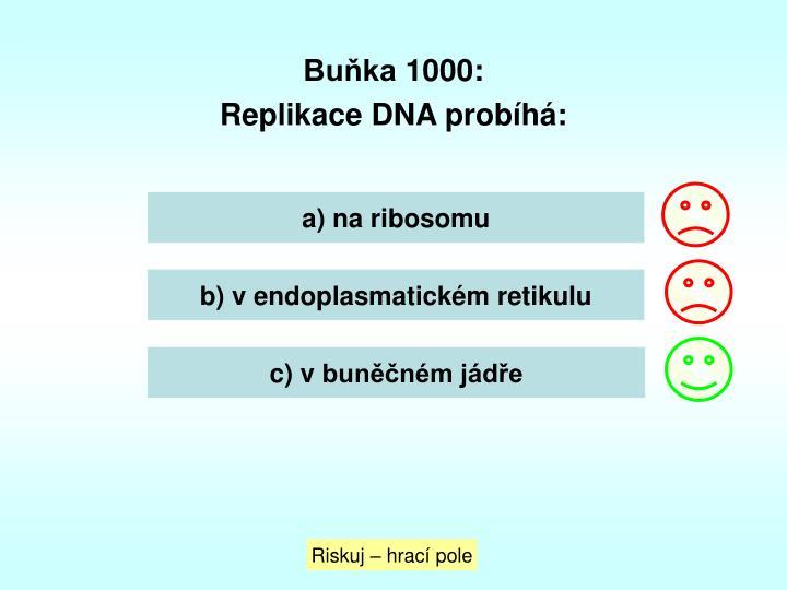 Buňka 1000:
