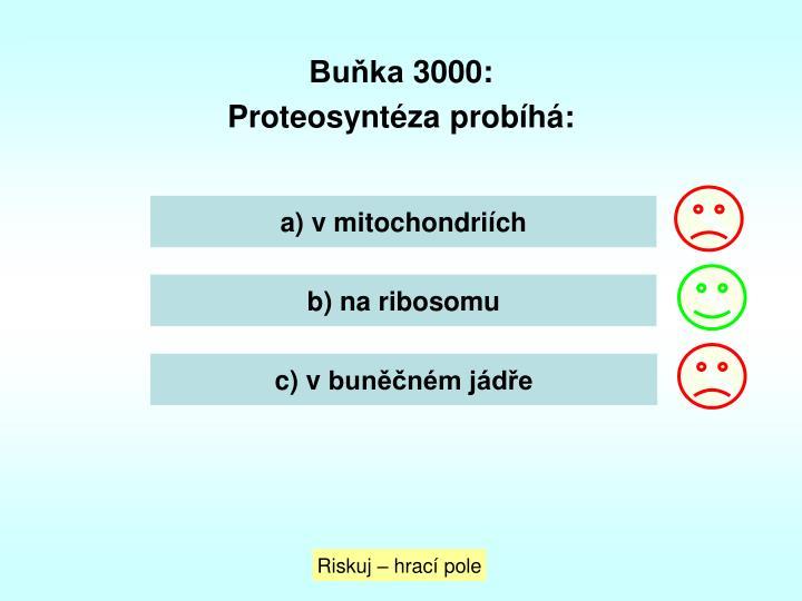 Buňka 3000: