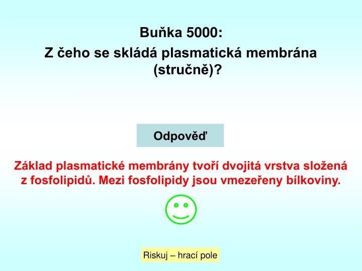 Buňka 5000: