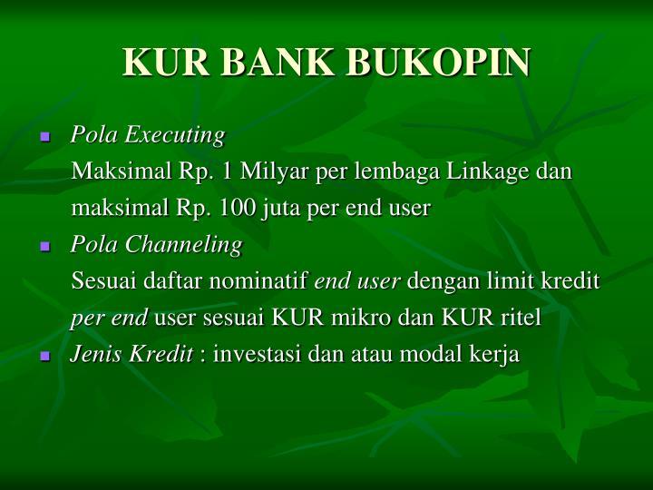 KUR BANK BUKOPIN