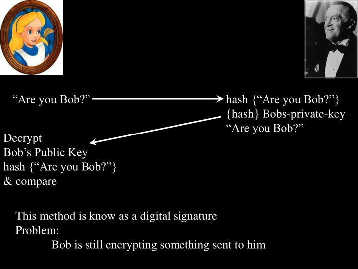 """""""Are you Bob?"""""""