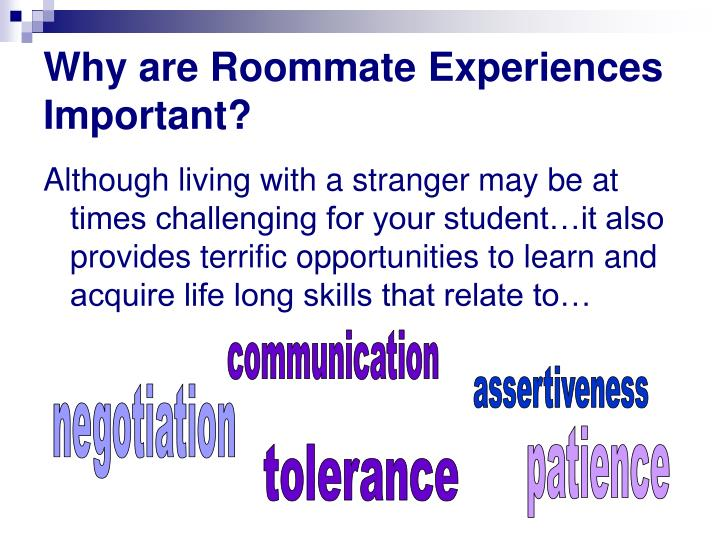 Why are Roommate Experiences Important?