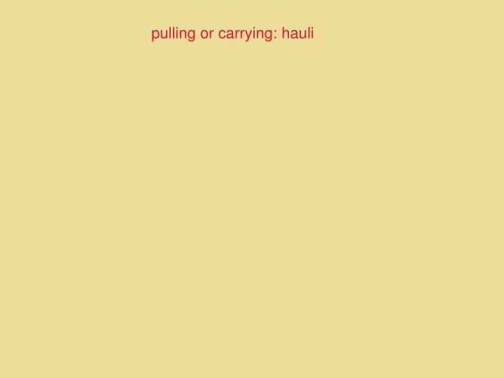 pulling or carrying: hauli