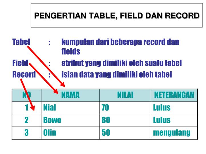 PENGERTIAN TABLE, FIELD DAN RECORD