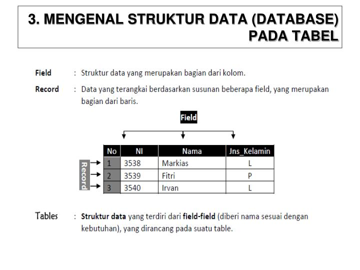 3. MENGENAL STRUKTUR DATA (DATABASE) PADA TABEL