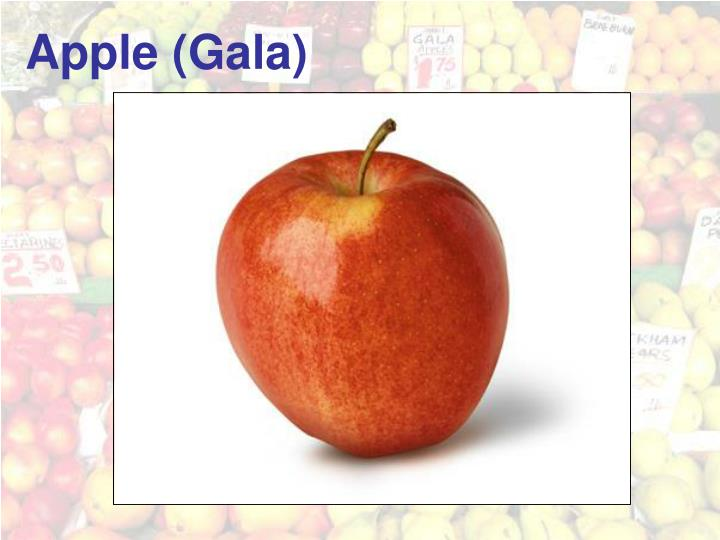 Apple (Gala)