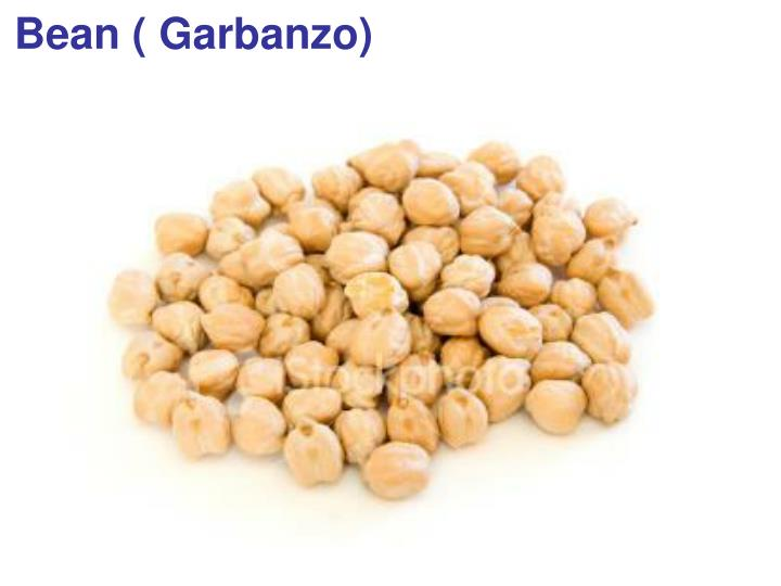 Bean ( Garbanzo)