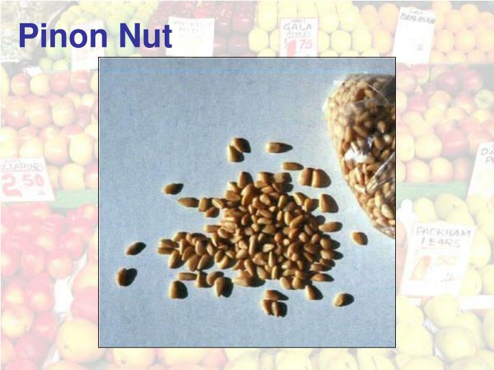 Pinon Nut