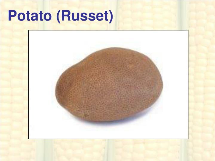 Potato (Russet)