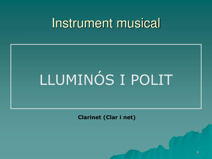 Instrument musical