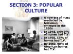 section 3 popular culture