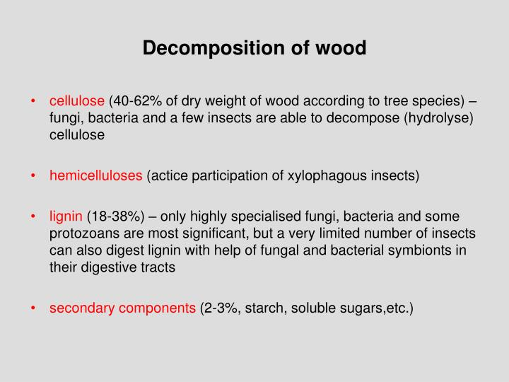 Decomposition of wood