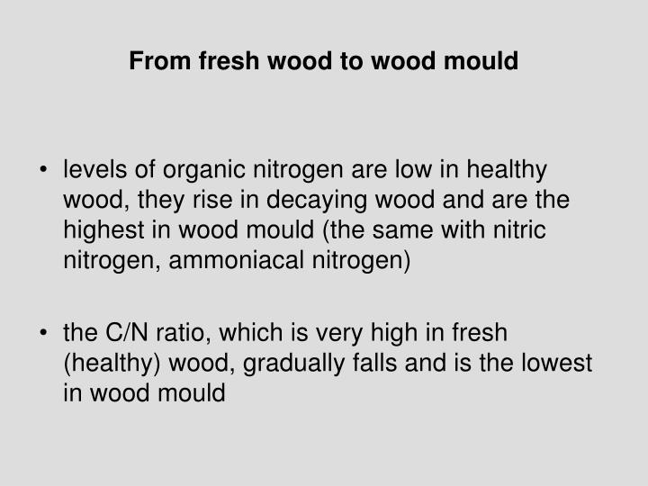 From fresh wood to wood mould