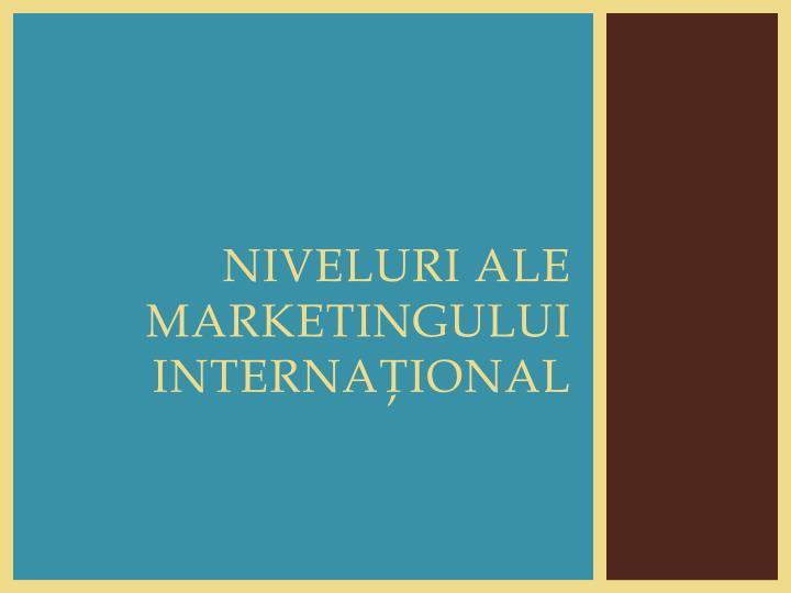 Niveluri ale marketingului internaţional