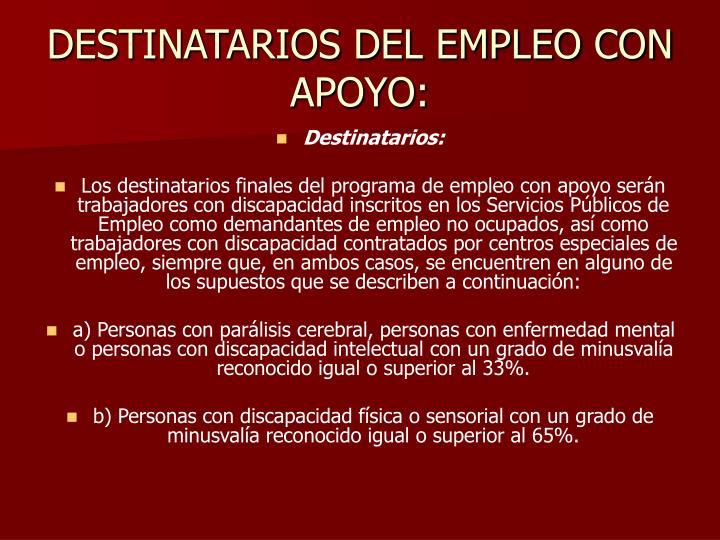 DESTINATARIOS DEL EMPLEO CON APOYO:
