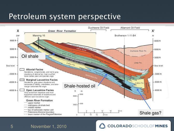 Petroleum system perspective