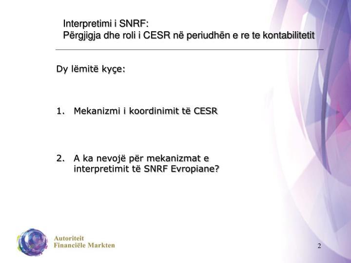 Interpretimi i SNRF: