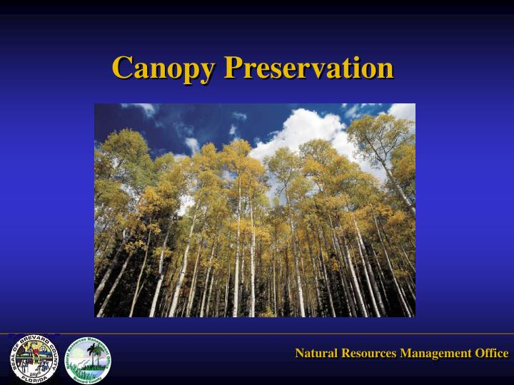 Canopy Preservation