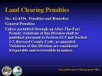 land clearing penalties
