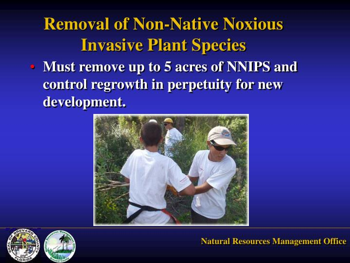 Removal of Non-Native Noxious Invasive Plant Species