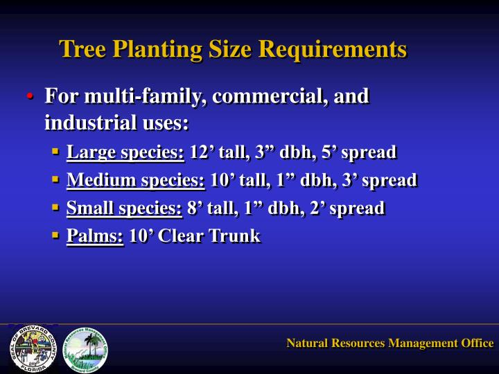 Tree Planting Size Requirements