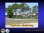 vegetative buffering
