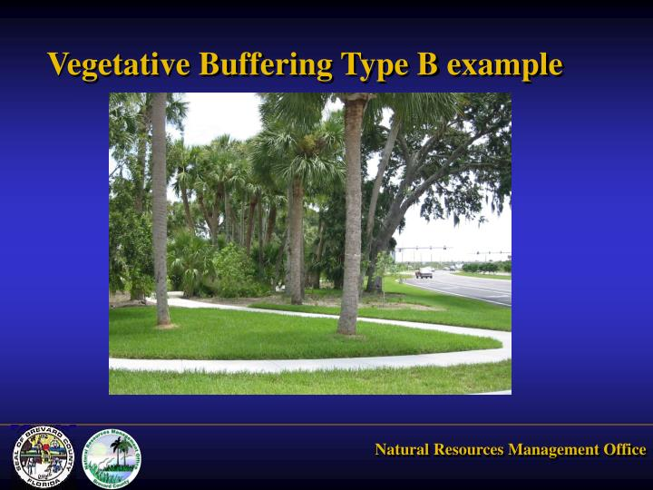 Vegetative Buffering Type B example