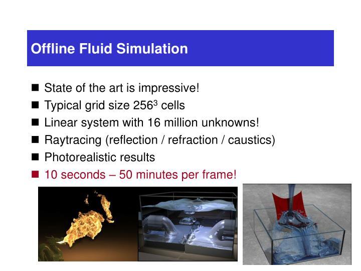 Offline Fluid Simulation