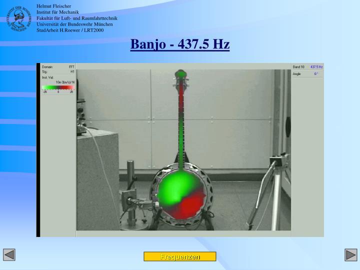 Banjo - 437.5 Hz