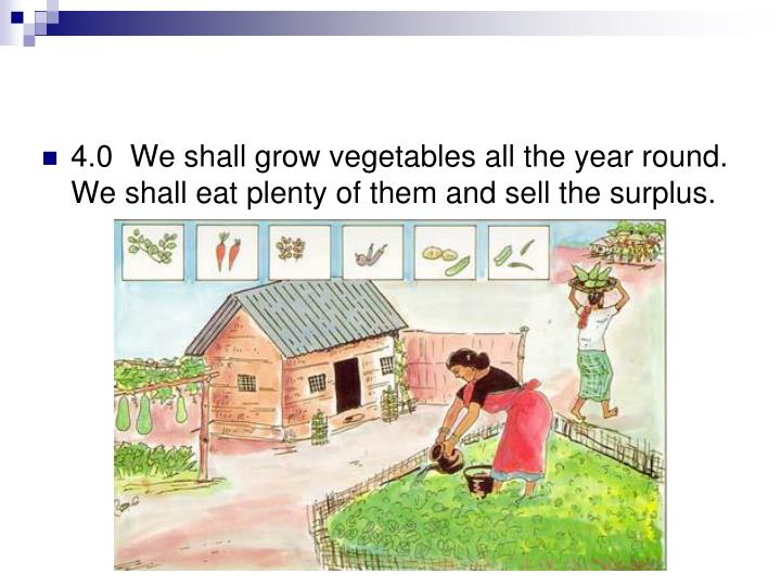 4.0  We shall grow vegetables all the year round. We shall eat plenty of them and sell the surplus.