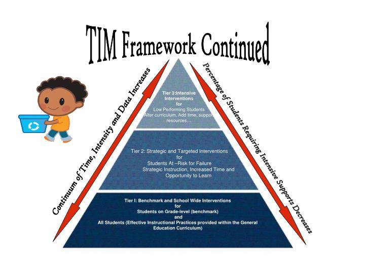 TIM Framework Continued
