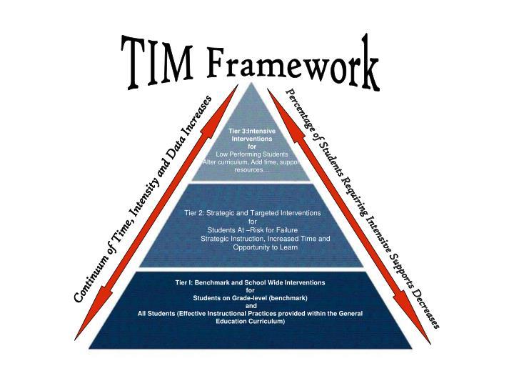 TIM Framework
