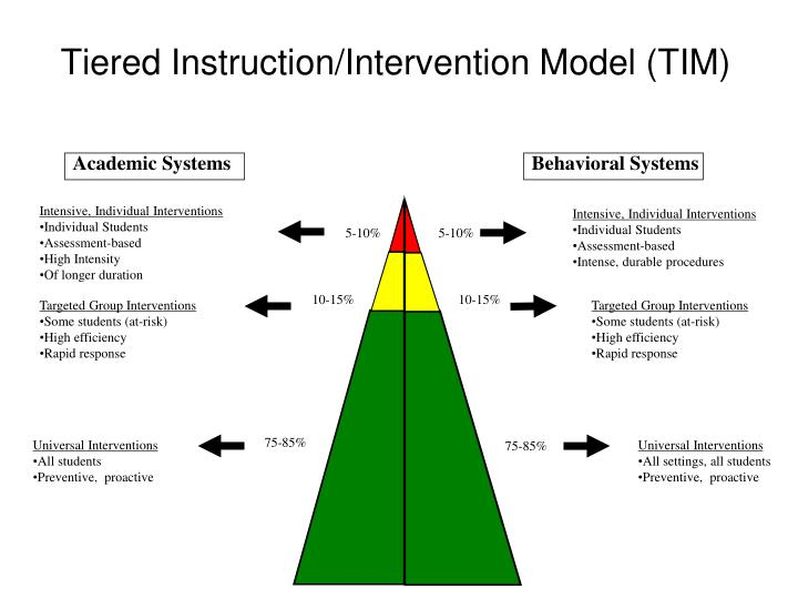Tiered instruction intervention model tim