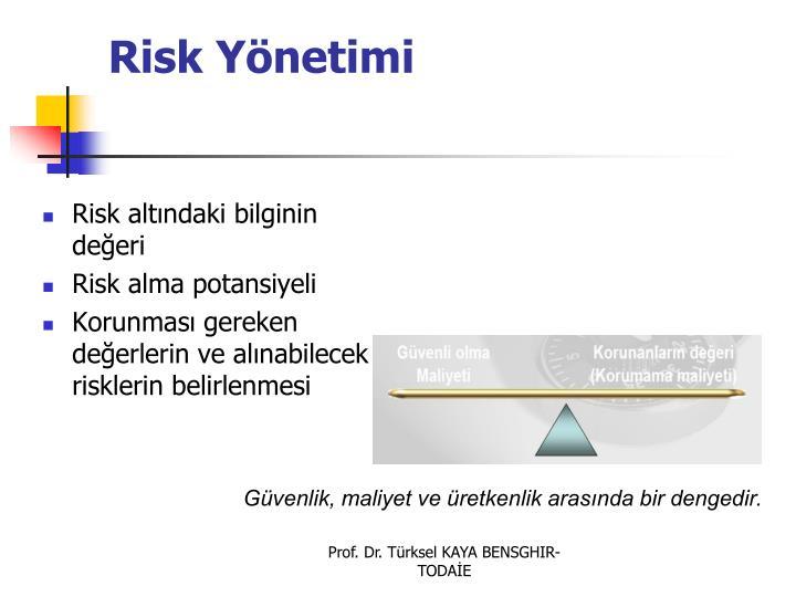 Risk Ynetimi