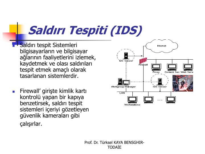 Saldırı Tespiti (IDS)