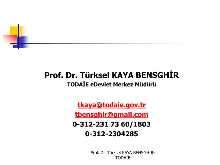 Prof. Dr. Türksel KAYA BENSGHİR