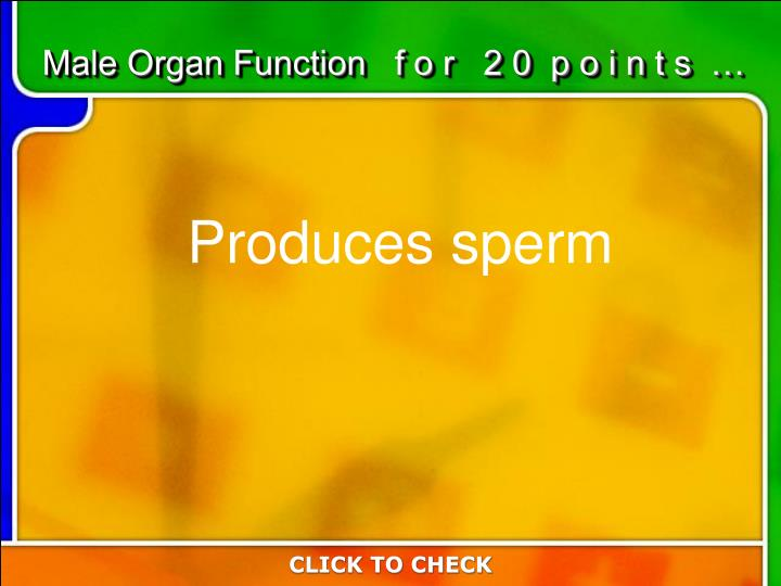 Male Organ Function   f o r   2 0  p o i n t s  …