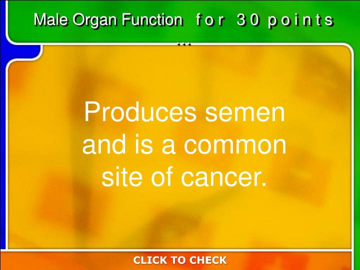 Male Organ Function   f o r   3 0  p o i n t s  …