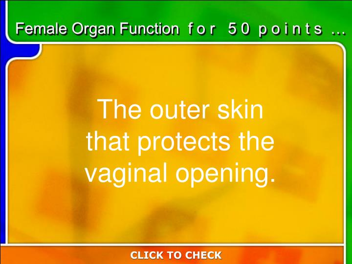 Female Organ Function  f o r   5 0  p o i n t s  …