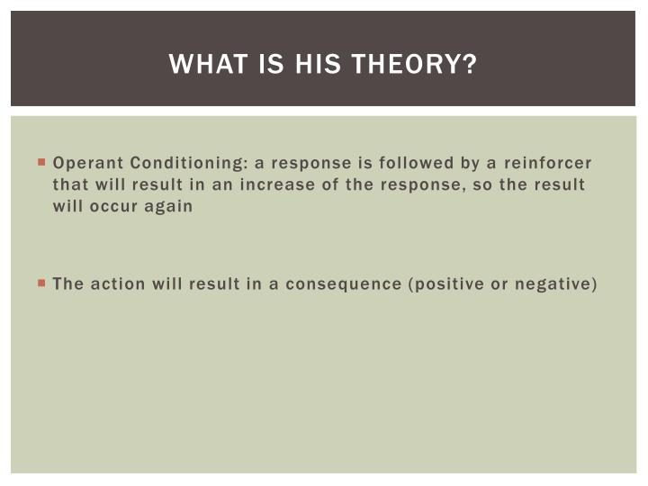 What is his theory?