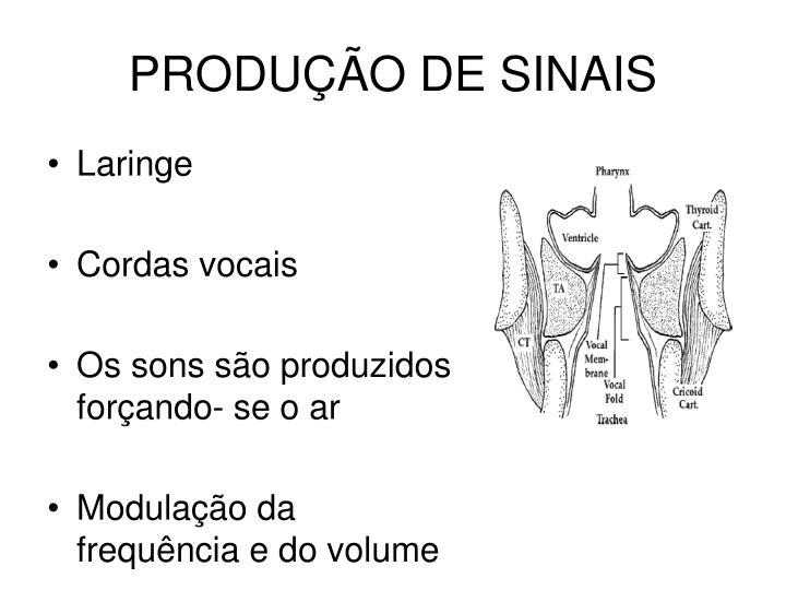 PRODUÇÃO DE SINAIS