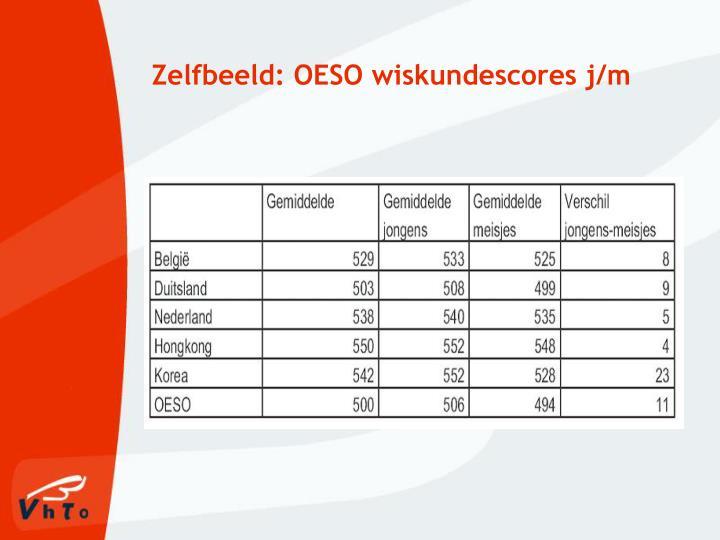 Zelfbeeld: OESO wiskundescores j/m